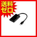 エレコム USB-C変換アダプタ C-HDMI ブラック AD-CHDMIBK Type-C映像変換アダプタ / TypeC-HDMI / ブラック 【 あす楽 】 【 送料無料 】 ELECOM