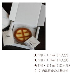 トロイカベークドチーズケーキ5号(6人分)【同梱不可】