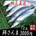 【送料無料】三陸生サンマ 鎌田水産 鮮さんま 12尾 網元から直送します【同梱不可】 ランキングお取り寄せ