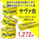 国産サバのオリーブオイル漬け Cava缶(サバ缶)3個セット スリーブケース入