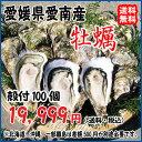 愛媛愛南町産 愛南 牡蠣(かき) 殻付き100個 送料無料 宇和海の幸問屋