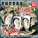 愛媛 愛南町産 【 愛南 牡蠣 】 殻付き30個 宇和海の幸問屋 送料無料