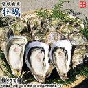 愛媛愛南町産 愛南 牡蠣(かき) 殻付き10個 送料無料 宇和海の幸問屋