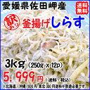 愛媛 佐田岬産 【 訳あり 釜揚げしらす 3kg 】( 250g×12p )小分け 冷凍 送料無料 浜