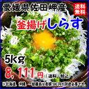 愛媛 佐田岬産 【 釜揚げしらす 】 5kg 宇和海の幸問屋 送料無料