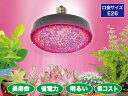 JEFCOM ジェフコム すくす〜くLEDランプ 屋外用 植物育成用 PSL160W-E2601-RB