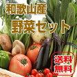 【送料無料】旬の野菜詰め合わせセット 13種以上 和歌山産 野菜セット】