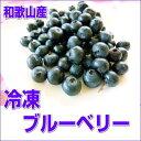 国産の冷凍ブルーベリー 500g 【和歌山県産】サイズ不選別 冷凍便