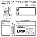 【耐久性1.5倍】12V10Ah 高性能シールドバッテリー(WP10-12SE)(完全密封型鉛蓄電池) 05P27Sep14