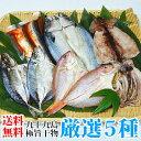 よか魚の九十九島極旨干物 厳選5種詰め合わせ「送料無料」(楽ギフ_のし)(ギフト)(プレゼント)(お中元)(父の日)(母の日)(敬老の日)(お歳暮)(無添加干物)(RCP)【05P03Sep16】