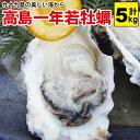 【週末限定!いまなら500g増量でお得♪】高島一年若牡蠣(カキ) 5kg(50個前後)身のギュッと引き締まった濃厚なカキ!『送料無料』(RCP)