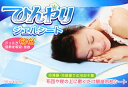 寝苦しい夜も、ひんやり 冷却ジェルマットで快眠♪冷凍庫・冷蔵庫での冷却不要!涼感 冷却 ひんやり ジェル シート 枕用 30X40cm【即納】