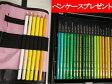三菱鉛筆 MITSUBISHI PENCIL 色鉛筆 ユニカラー 100色 UC100C【色鉛筆ロールをプレゼント】