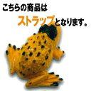 蛙 脊推動物亜門 両生網カエル目 21:カエルストラップC ビーム ガチャポン