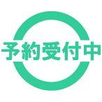 イナズマイレブン フィギュアキーチェーン 2 全5種セット 9月予約 タカラトミーアーツ ガチャポン ガチャガチャ ガシャポン