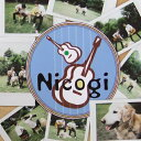 艺人名: Q - 【〜5/21(月)23:59まで最大P18倍】Fundamental Nicogi 1st CD「s・o・r・a」 FMCD-0001 ファンダメンタル FMCD0001 にこぎ・そら UHQCD(Ultimate HiQuality CD)
