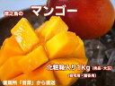 A品・徳之島産・完熟・百菜マンゴー(1kg・2玉~3玉)送料無料(一部地域を除きます)お中元に!ギフトに!今年は良品が豊作 世界自然遺産登録間近。