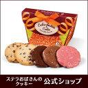 ステラおばさんのクッキー クッキーチョコセレクト(S)/19バレンタインフェア 手提げ