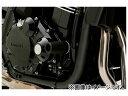2輪 デイトナ エンジンプロテクター 品番:79941 JAN:4909449447963 カワサキ ZRX1200DAEG 2009年〜2...