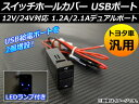 AP スイッチホールカバー USBポート トヨタ車汎用 12V-24V/1.2A-2.1A フタ付き LEDランプ付き AP-EC029