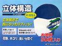 マイスター/Meister 立体構造フィットマスク 使い捨て 50枚入 SK-MI-MASK-3D-50-N95 JAN:4949908080676