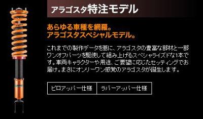 AragostaTYPE-C特注モデルIR-(12)HA1Wラバーアッパー仕様