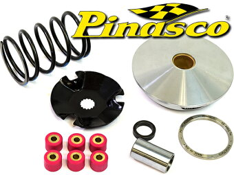 PinascoBWS100BW'S100グランドアクシス100バリエーターセット
