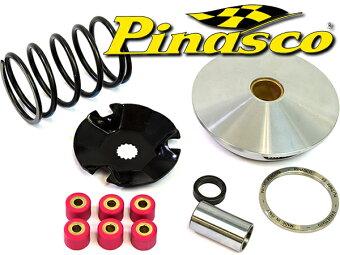 PinascoBWS100BW'S100�����ɥ�������100�Хꥨ���������å�
