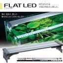 コトブキ フラットLED 900 シルバー 90cm 水槽用照明・ライト 『照明・ライト』 _lga