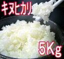 【送料無料】【新米】平成23年淡路産キヌヒカリ5kg