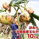 玉ねぎ 10kg 兵庫県 淡路島産 タマネギ 淡路 淡路島 たまねぎ 玉葱 10キロ