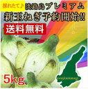 ■3日間限定SALE!200円割引■淡路島新玉ねぎ5kg 三...