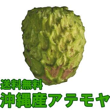 【送料無料】沖縄産アテモヤ ギフト化粧箱入り2kgギフト(贈答)や沖縄土産で人気の果物(くだもの・沖縄食材) 送料無料市場 お試し スイーツ 販売(楽天通販) 引越し 挨拶 ギフト