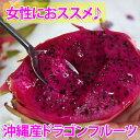 沖縄産ドラゴンフルーツ(レッドピタヤ)2.0kg前後(4?8個)産直価格でお届け♪【smtb-MS】