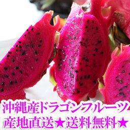 【送料無料】沖縄産ドラゴンフルーツ(レッドピタヤ・レッドドラゴンフルーツ)2.0kg前後(4?8個)ギフト(贈答)や沖縄土産で人気の果物(くだもの・沖縄食材) 送料無料市場 お試し スイーツ 販売(楽天通販)