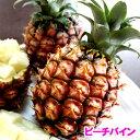 沖縄産ピーチパイン(パイナップル) 安心保証付き 送料無料お徳用5kgサイズ(4〜10個)自社管理農園から直送だから安心保証付き沖縄産フルーツ パイナップルの通販はお任せ下さい ギフト