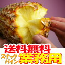 【業務用】沖縄産スナックパイン約20.0kg(16〜30個)お届け日の指定は出来ません。ご了承ください