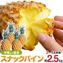 沖縄産スナックパイン(パイナップル)約2.5kg送料無料 安心保証付き★自社管理農園から直送だから安心保証付き沖縄産フルーツ パイナップルの通販はお任せ下さい ギフト 母の月 母の日 父の日