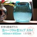 【琉球ガラス(琉球...
