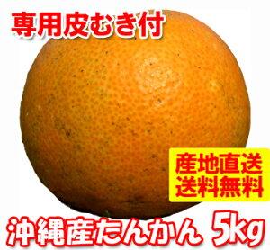 オレンジ ばらばら