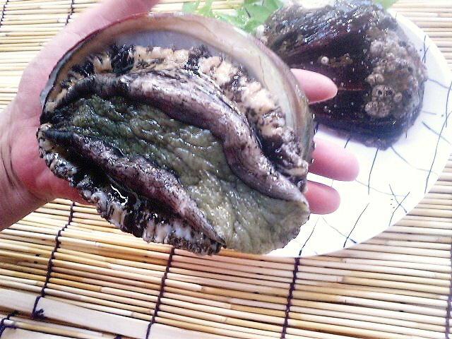 ♪🎃ハロウィーン♪あわび・活黒あわび 天然淡路島産 3枚約1kg¥14800