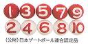 【送料無料】【サンラッキー SUNLUCKY】【ゲートボール】 公認ボール10個セット SG-916