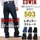 Ed503-big-01