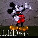【期間限定クーポンあり】2Dスタンドソフトモチーフライト ミッキーマウス TD-2D24LT【タカショー キャラクター ライト ディズニー Disneyモチーフライト ミッキー イルミネーション】【10P03Dec16】