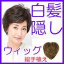 【送料無料】総手植え 白髪隠しウィッグ ST-003 ( 部...