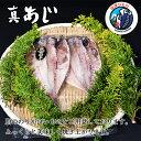 京都祇園味幸日本一辛い黄金一味仕込みのカレールウ150g