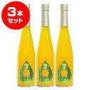 熊本甘夏シロップ×3本 果汁80% 500ml
