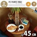 プランツテーブル (PLT Plants Table) サー