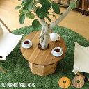 【P10倍】プランターテーブル サイドテーブル PLT Plants Table(プランツテーブル) サークルΦ45cm カラー(チーク・マンゴー) 天然木 観葉植物テーブル 西海岸
