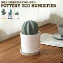 е╧еєея HANWA ╞л┤яеие│▓├╝╛┤я ╡д▓╜╝░ е╡е▄е╞еє ┬ч eco humidifier Cactus big ONL-HF015 ▓├╝╛┤я ┬ю╛х е╤б╝е╜е╩еы▓├╝╛┤я ╞л┤я еие│ е╩е┴ехещеы дкд╖дудь ╛о╖┐ ┐▓╝╝ еке╒еге╣ ┼┼╕╗╔╘═╫